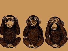 Three monkeys, see no evil, hear no evil, speak no evil